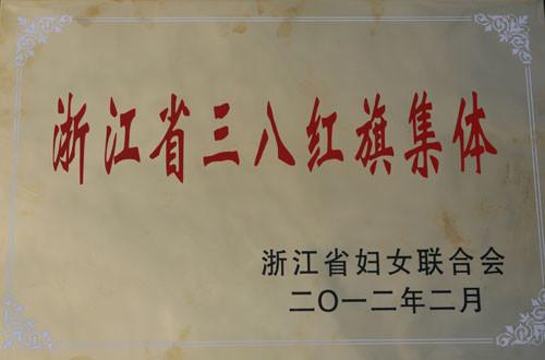 浙江省三八红旗集体