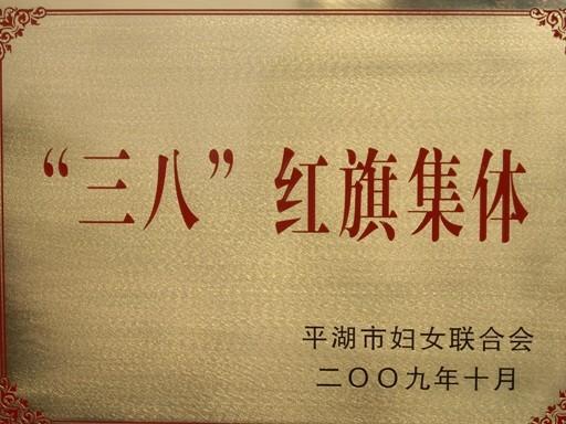 """平湖市""""三八""""红旗集体"""